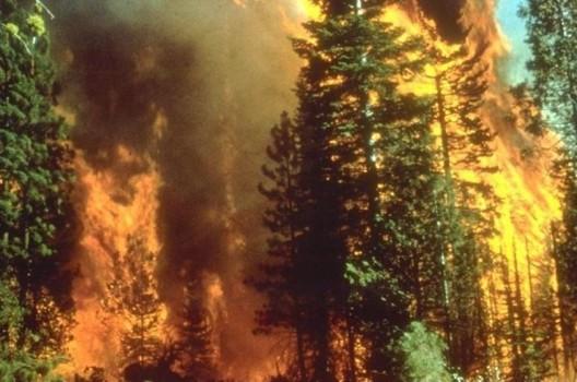 wildfire-california-e1480418175548-4a659173f5ed69a9ec0c47a7c69aa7c9b934ca2f