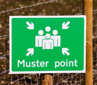 Muster-point-e1534931907766-c93cc9d1a52ac512e0d829f9f28e1edadb2ac4eb